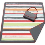 Our Top Rated Beach Blankets